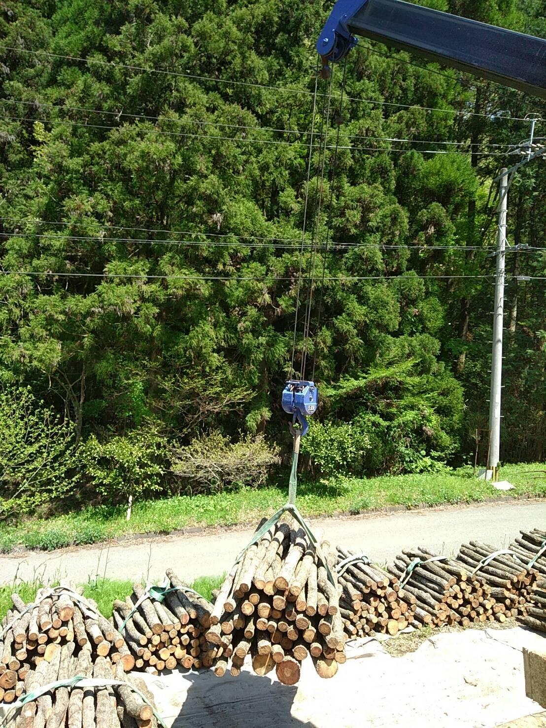 原木の運び込み風景(大分産)