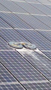 鹿児島県 ネオプラスきよやま串良店様にて太陽光パネル(野立て)洗浄