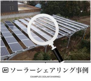 ソーラーシェアリング事例